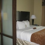 Bilde fra Comfort Suites West of the Ashley