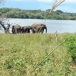 Foto di Thebe River Lodge