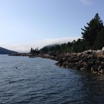 Somes Sound View Campground의 사진