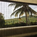 "View from bathroom, ""Coqui"""