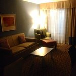 Foto Holiday Inn & Suites Atlanta Airport - North