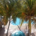 Foto de Caribbean Palm Village Resort