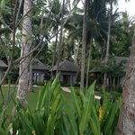 Photo de The Chandi Boutique Resort