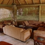 Foto de Timbavati Safari Lodge