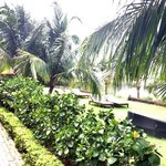 Hoian Marina Resort & Spaの写真