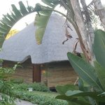 Foto de Sodwana Bay Lodge