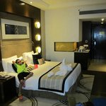 Φωτογραφία: Radisson Blu Agra Taj East Gate