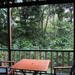Red Mill House in Daintree의 사진