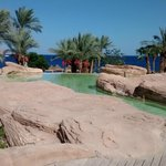 Foto di The Royal Savoy Sharm El Sheikh