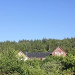 Foto di Garadh Buidhe Bed and Breakfast