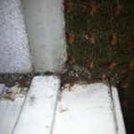 Bathroom threshold baseboard - dare go barefoot?