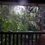 Miju Rainforest Retreat照片