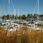 Bellwether Bay marina