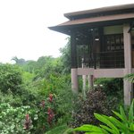 TikiVillas Rainforest Lodge resmi