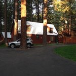 Prospectus cabin is located just by the entrance driveway as you driving in. the setback is nois