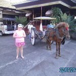 Jazlyn with the litte horse & Cart transport to the Hot Springs
