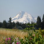 Foto de Mt. Hood Bed and Breakfast