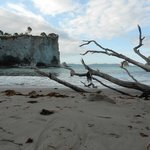Cathedral Cove Foto