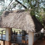 Photo of Kapani Lodge - Norman Carr Safaris