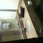 Φωτογραφία: Quality Suites Milwaukee Airport
