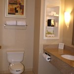 Photo de Holiday Inn Express Hotel & Suites Latham