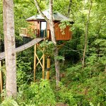 "One of the ""Treehouse""cabins"