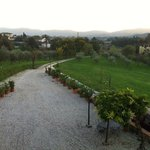 Photo of Agriturismo Amedea