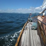 Cruise aboard Sailing Vessel Owl
