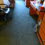 Photo de BEST WESTERN Executive Inn & Suites