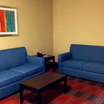 Foto van Holiday Inn Express & Suites Jackson Downtown - Coliseum