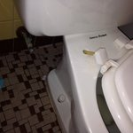 Broken toilet at Binns Motor