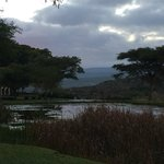 Foto Bushmans Kloof Wilderness Reserve & Wellness Retreat