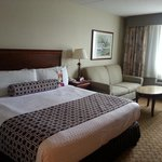 Φωτογραφία: Crowne Plaza Hotel Philadelphia - King of Prussia