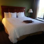 Billede af Hampton Inn and Suites Valley Forge/Oaks