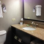 Foto van Holiday Inn Express Hotel & Suites Chicago-Deerfield/Lincolnshire