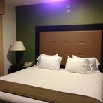 Foto de Holiday Inn Express Hotel & Suites Chicago-Deerfield/Lincolnshire