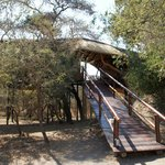 Zdjęcie Pezulu Tree House Game Lodge