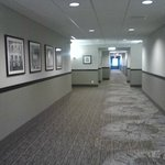 Foto van Staybridge Suites Bowling Green
