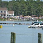 Pony Swim from Toms Cove
