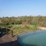 Bilde fra Lion Sands River Lodge