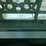 dirty window, with bird droppings
