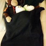 Housekeepers tucked in my twins stuffed animals!