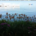 Foto Harbor Shores on Lake Geneva