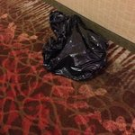 trash left in the hallway