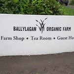 Photo de Ballylagan Organic Farm