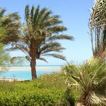 Φωτογραφία: Moevenpick Resort & Spa El Gouna