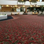 Holiday Inn Rapid City - Rushmore Plaza resmi