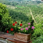 Gorgeous Tuscan views in every direction