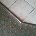 trip hazard carpet and tile