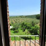 view from upstairs bedroom onto olive grove